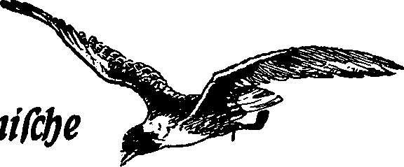 Reichswehr sowie Luftwaffe und Luftfahrt im Ersten Weltkrieg - Motorflug sowie Fliegerei und Flugzeuge im Jahre 1916