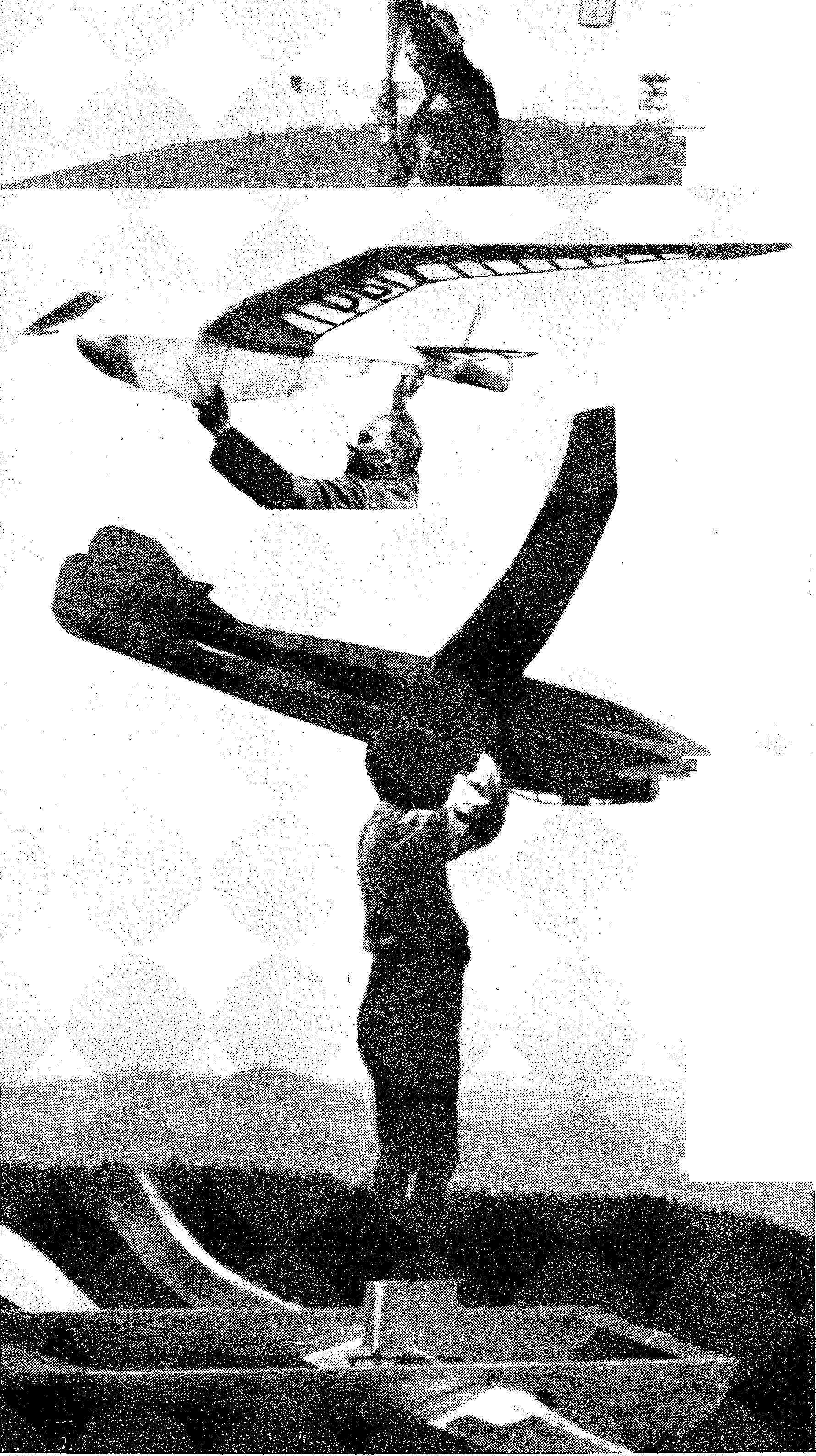 Luftfahrt und Luftverkehr sowie Luftwaffe im Dritten Reich 1935