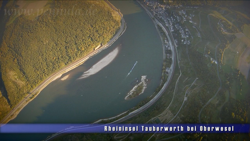 Rheininsel Tauberwerth bei Oberwesel
